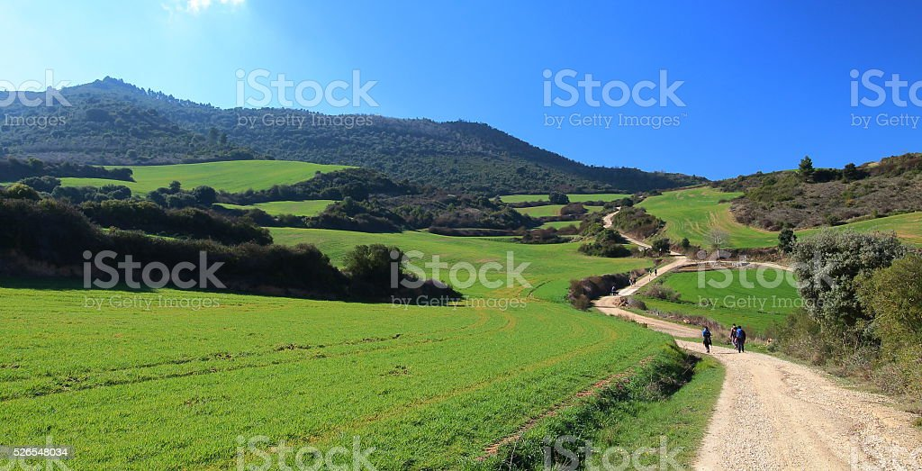 Pilgrims walking through endless green fields, Camino de Santiago, Navarra. stock photo