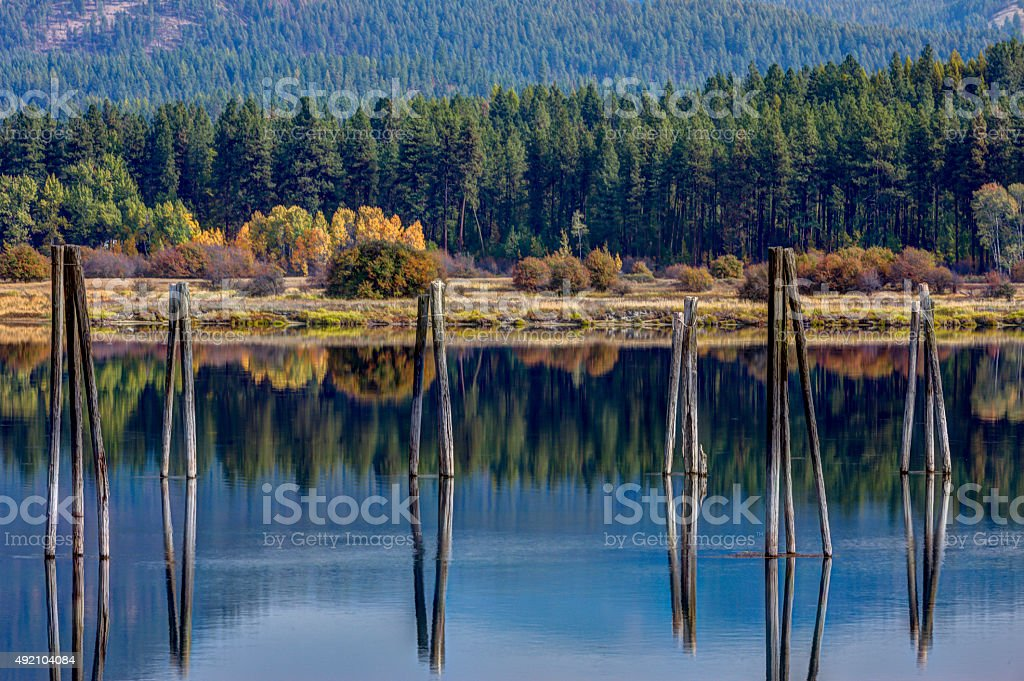 Pilings in the river. stock photo