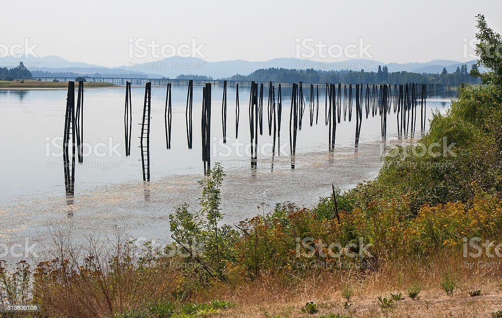 Pilings stock photo