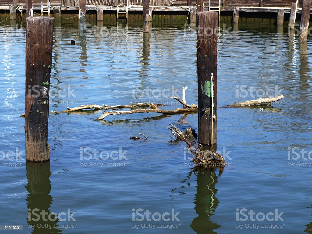 Pilings royalty-free stock photo