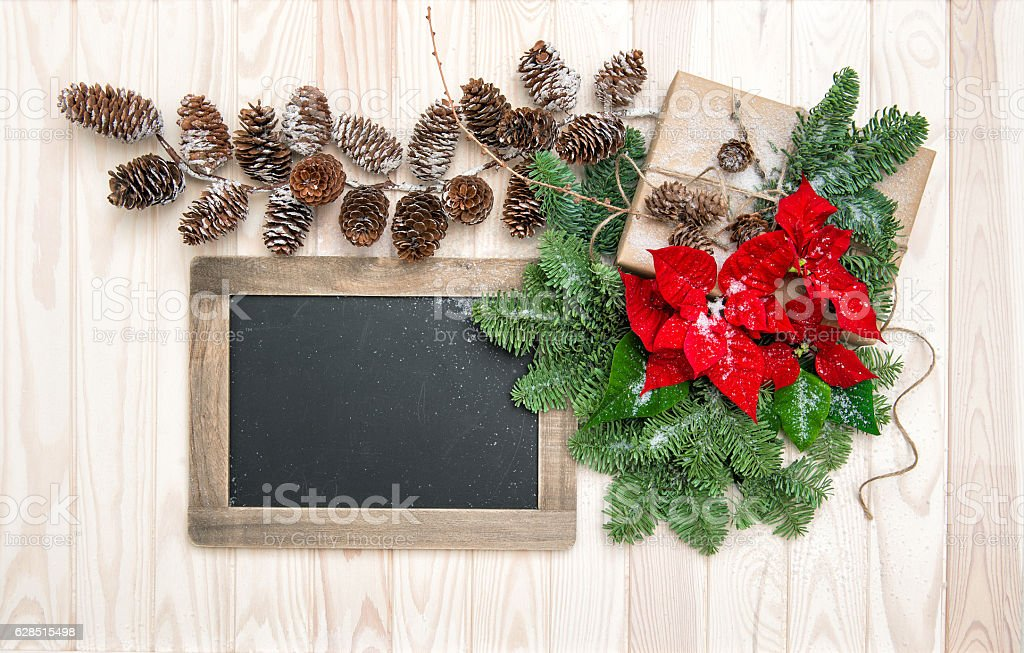 Pine branches red flowers poinsettia vintage chalkboard stock photo
