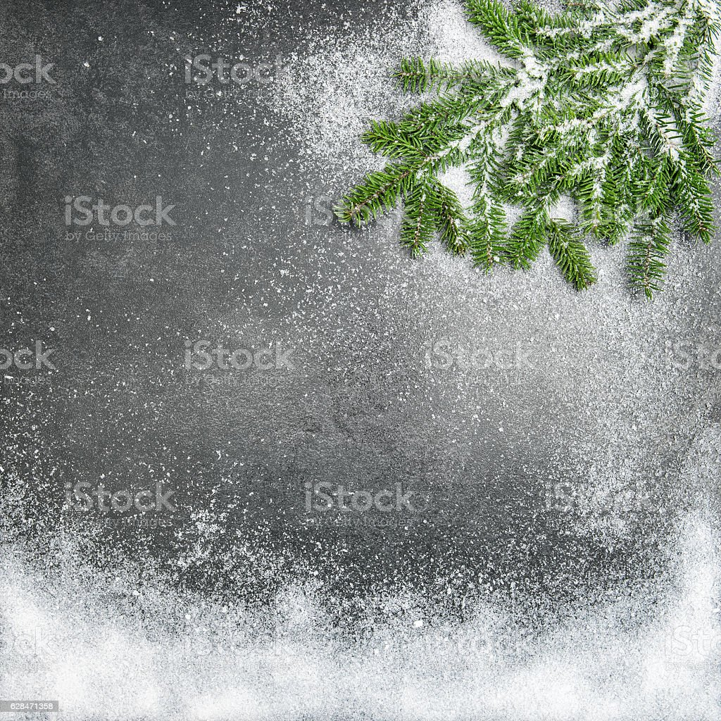 Pine branches snow Christmas holidays winter background stock photo