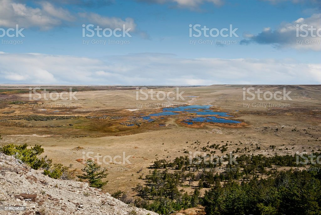 Pine Butte Swamp stock photo
