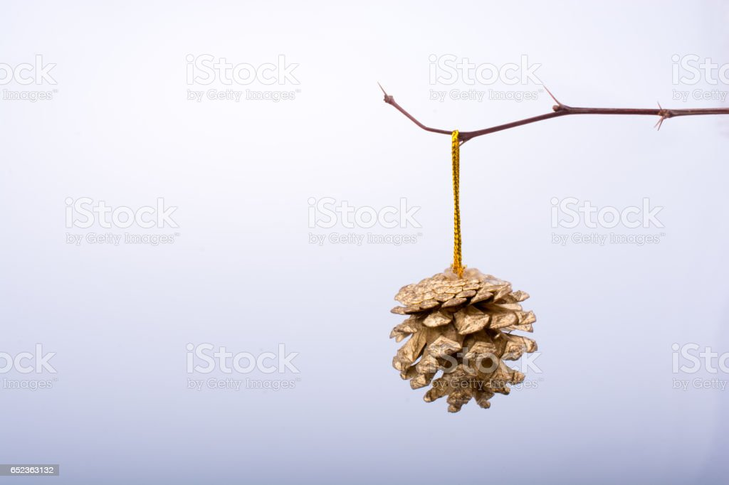 Pine cone at the edge of a stick stock photo
