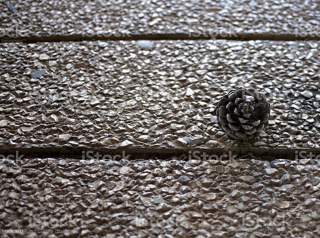 Pine Cone isolated on stoney pavement stock photo