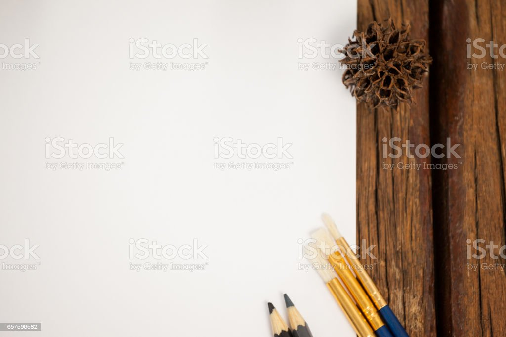 Pine cone kept on the border of white drawing paper stock photo
