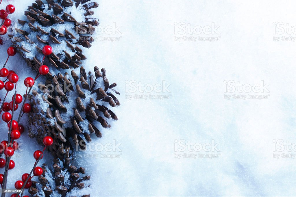 Pine Cones And Holly Berries On Snow stock photo