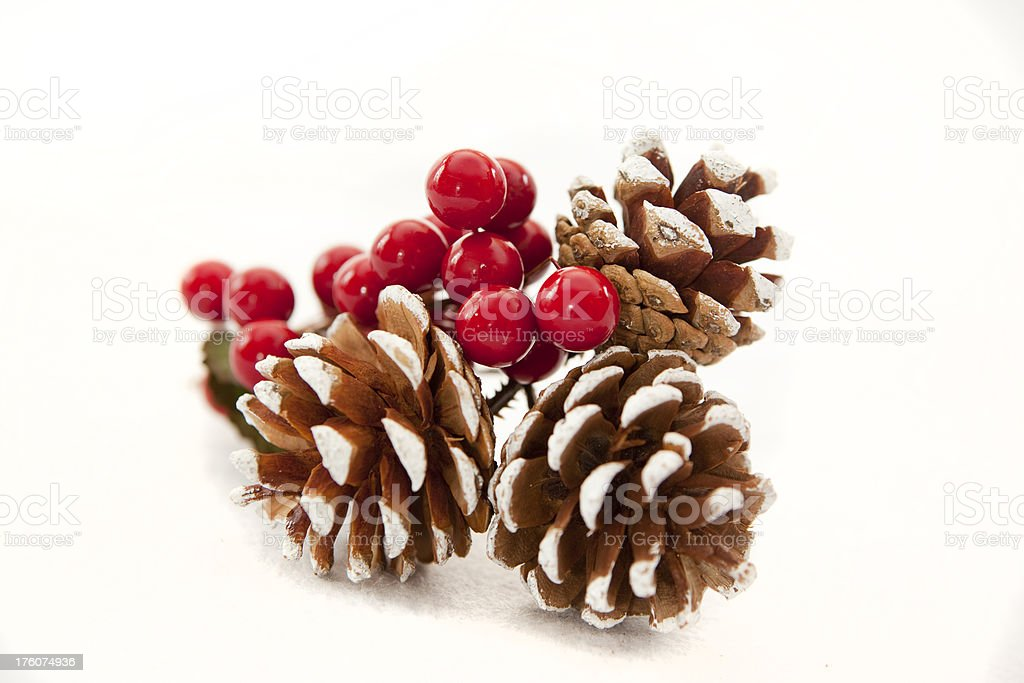 Pine Cones & Holly Berries royalty-free stock photo