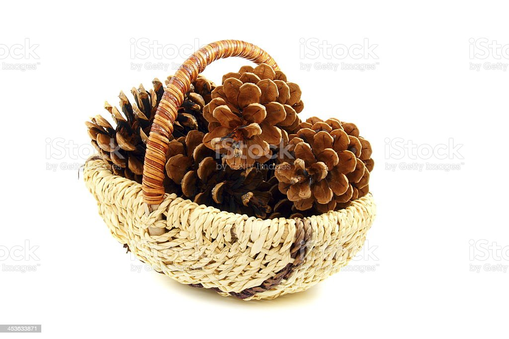 Pine cones in a basket. royalty-free stock photo