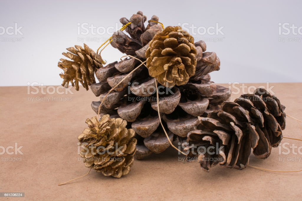 Pine cones on a brown background stock photo
