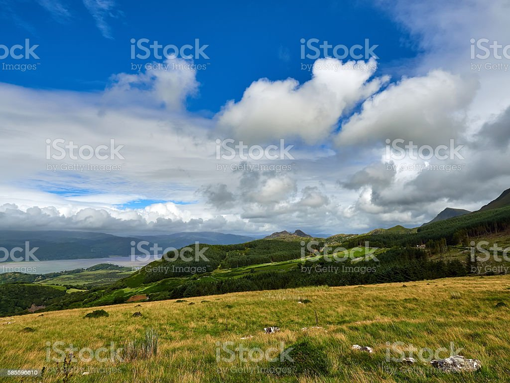 Pine covered foothills of Cader Idris stock photo