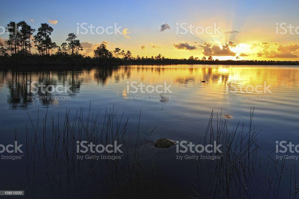 Pine Glades Lake Sunset stock photo