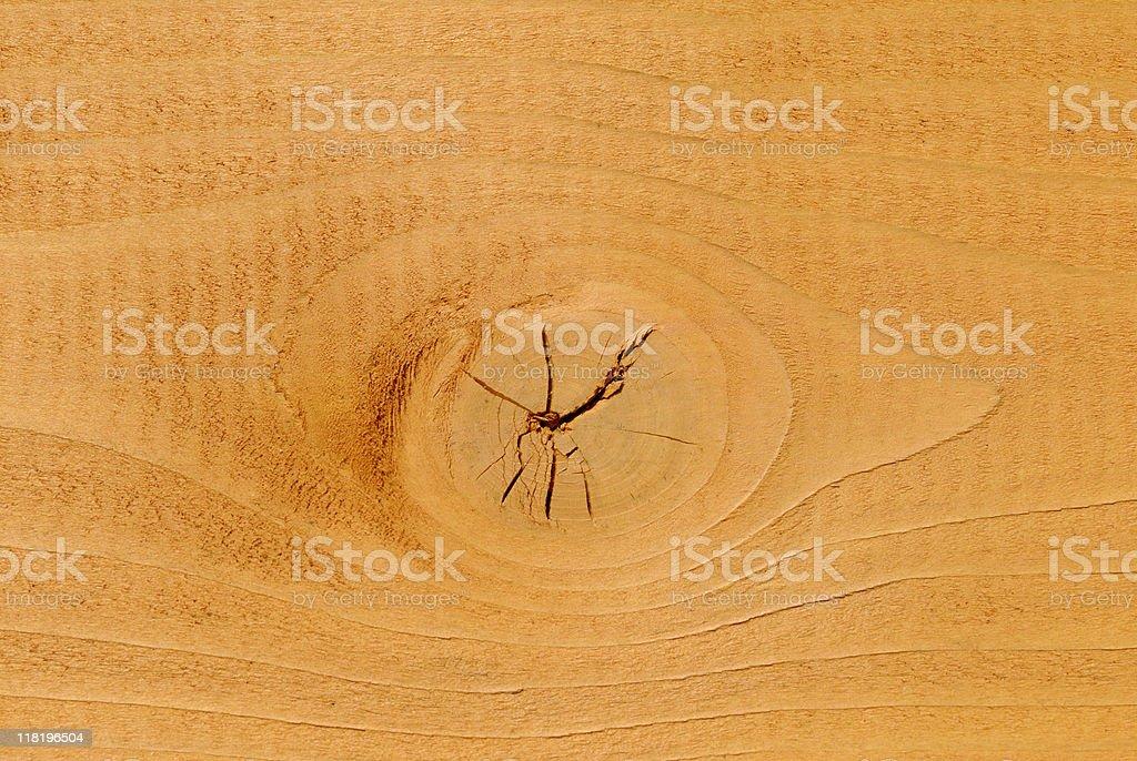 Pine Knot stock photo