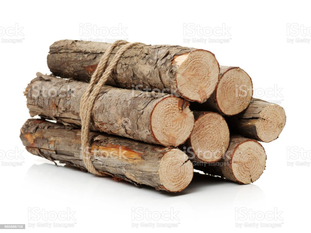 Pine logs wood on White Background stock photo
