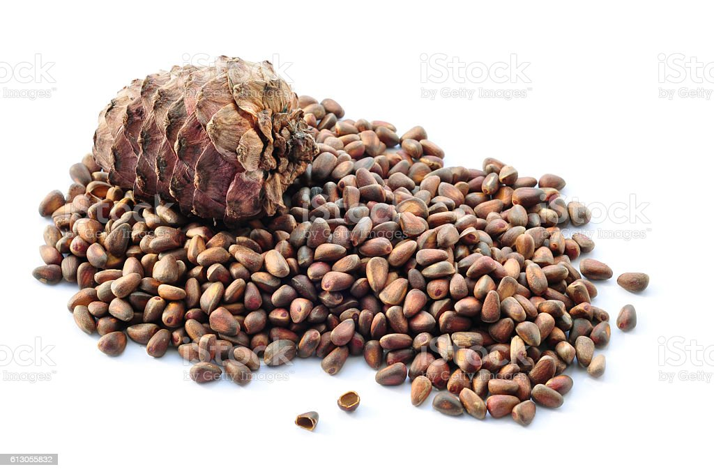 Pine nuts and a pine cone. stock photo