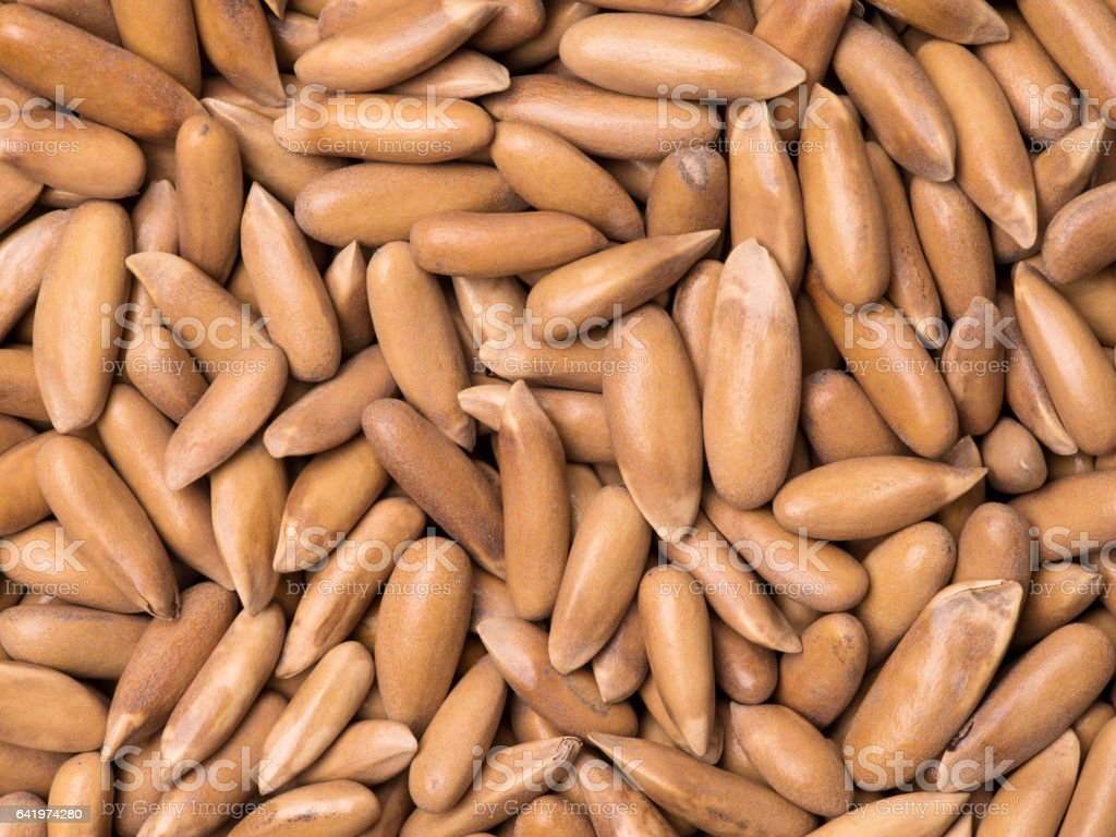 Pine Nuts from Brazil isolated   background stock photo