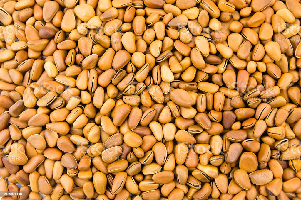 Pine nuts stock photo