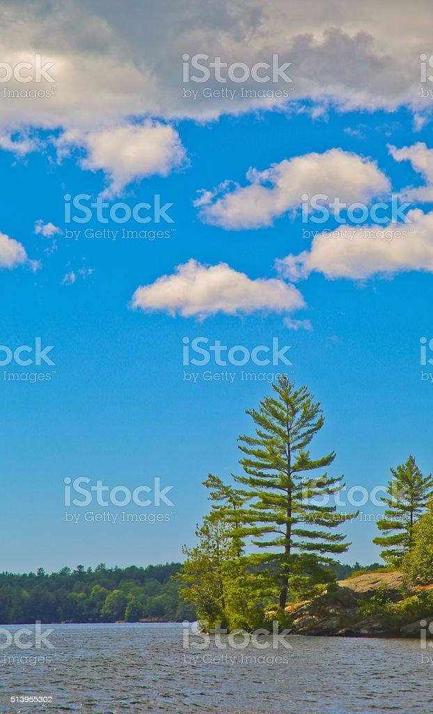 Pine Trees on an Island, Georgian Bay, Ontario, Canada stock photo