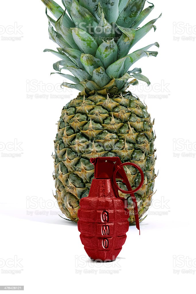 Pineapple and Red Grenade with copy space stock photo