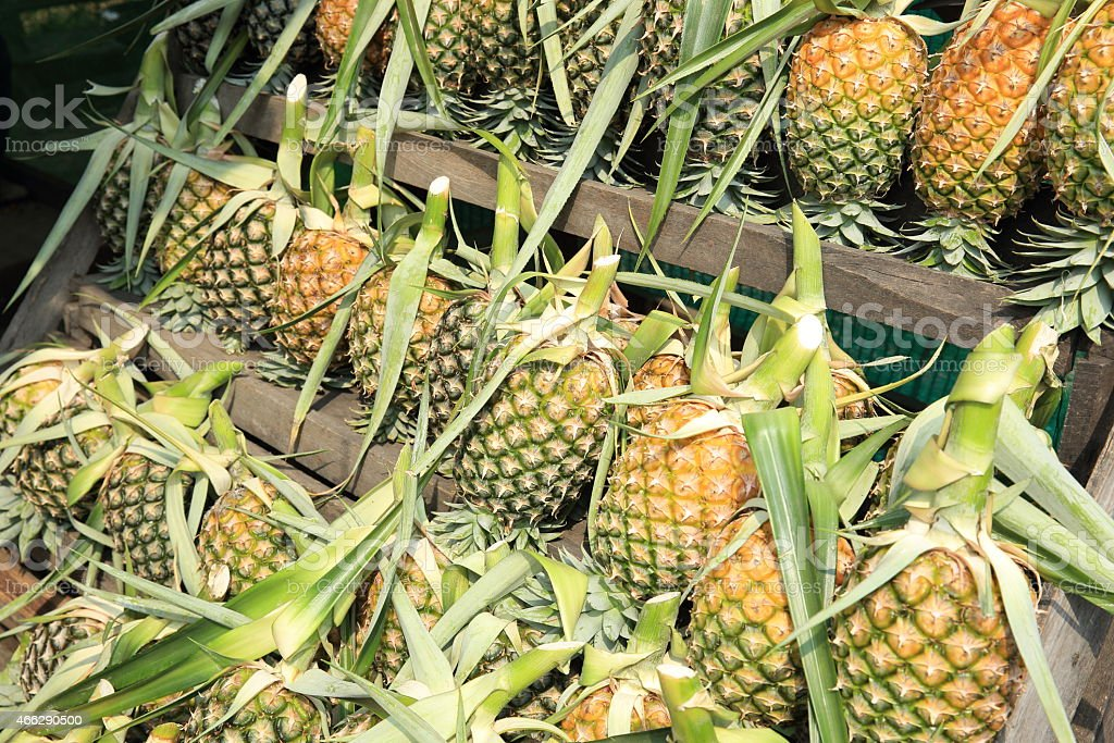 pineapple frutis stock photo