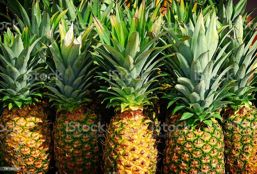 pineapple in market stock photo