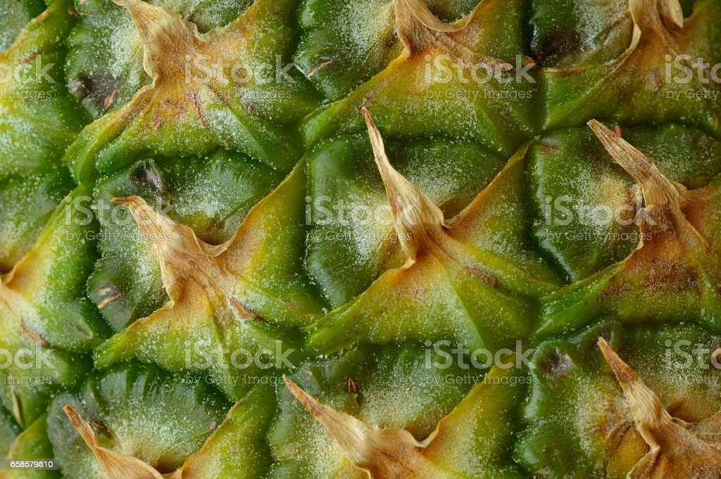 Pineapple Macro stock photo