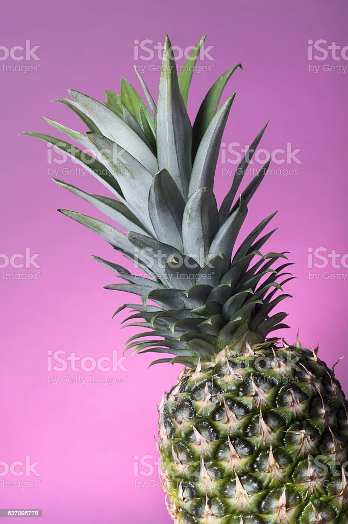 Pineapple on Pink Background stock photo