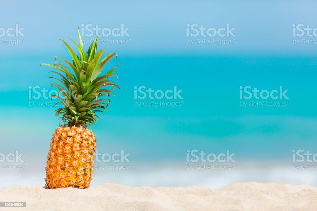 Pineapple on the beach stock photo