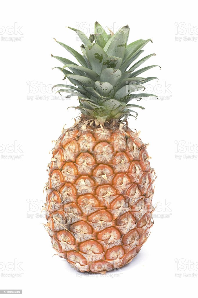 Pineapple  (Ananas sativus) royalty-free stock photo
