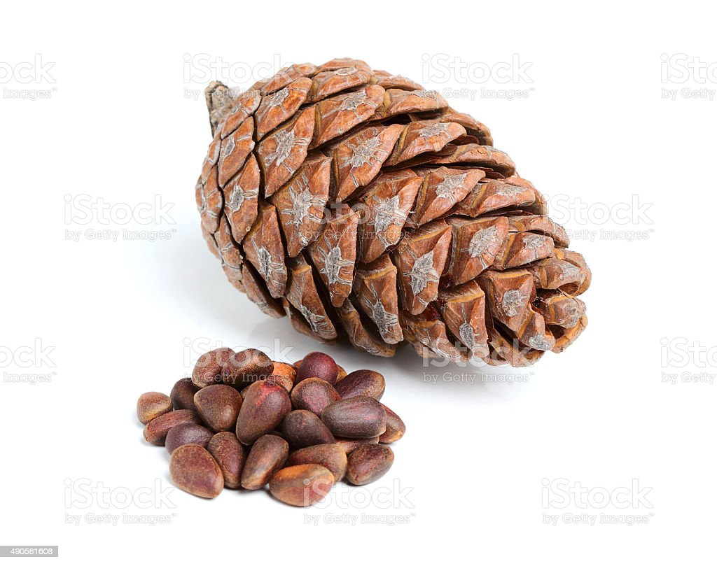 Pinecone with pine nuts. stock photo