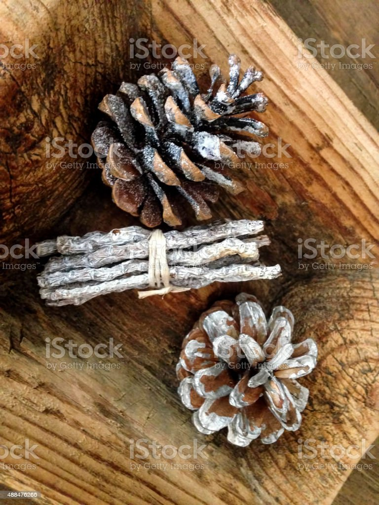 Pinecones and dried Plants stock photo