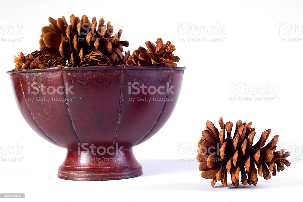 Pinecones in tin container stock photo