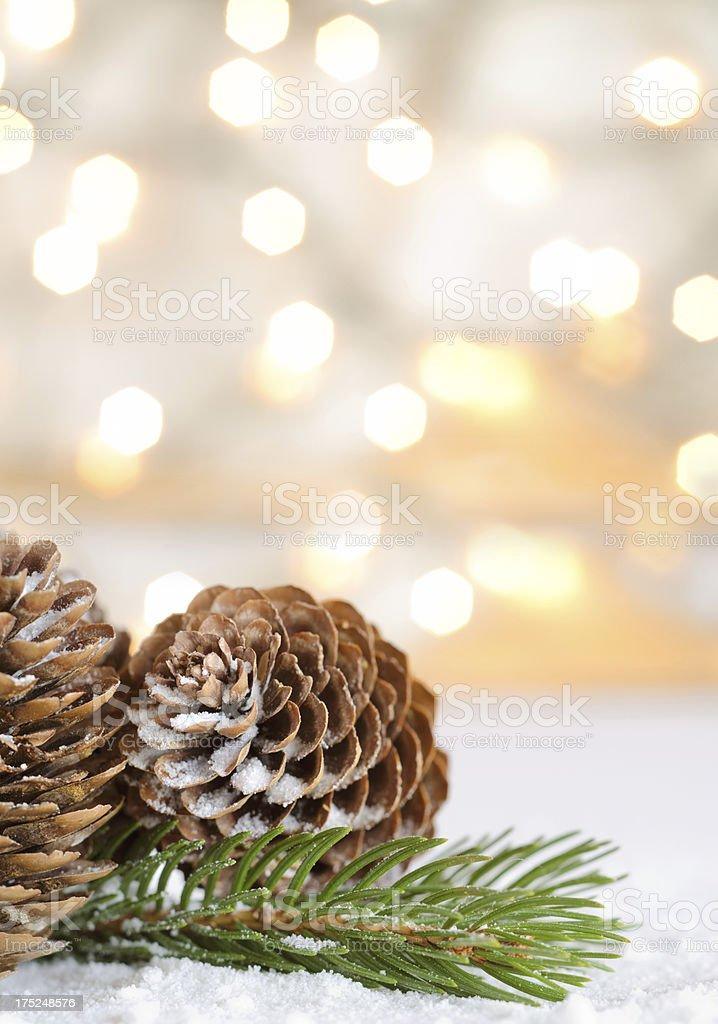 Pinecones with lights stock photo