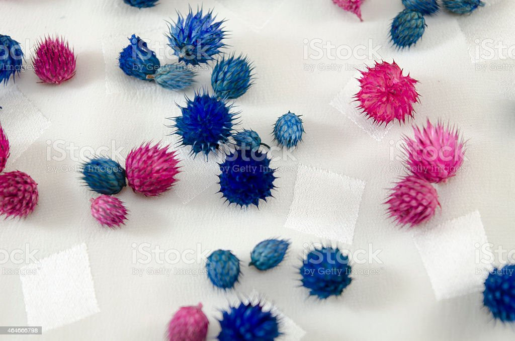 Pink and blue flowers on a tablecloth royalty-free stock photo