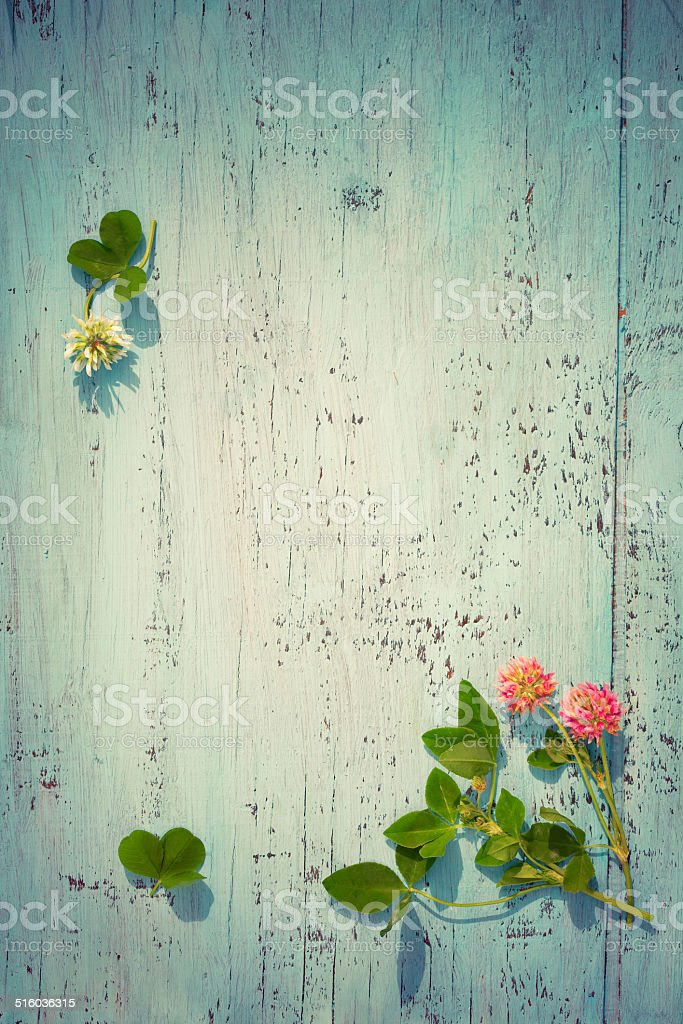 Pink and white clover on old wooden board, vintage colors stock photo