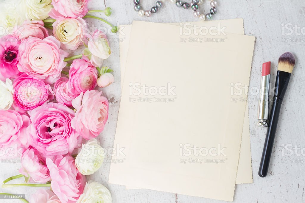 Pink and white ranunculus flowers stock photo