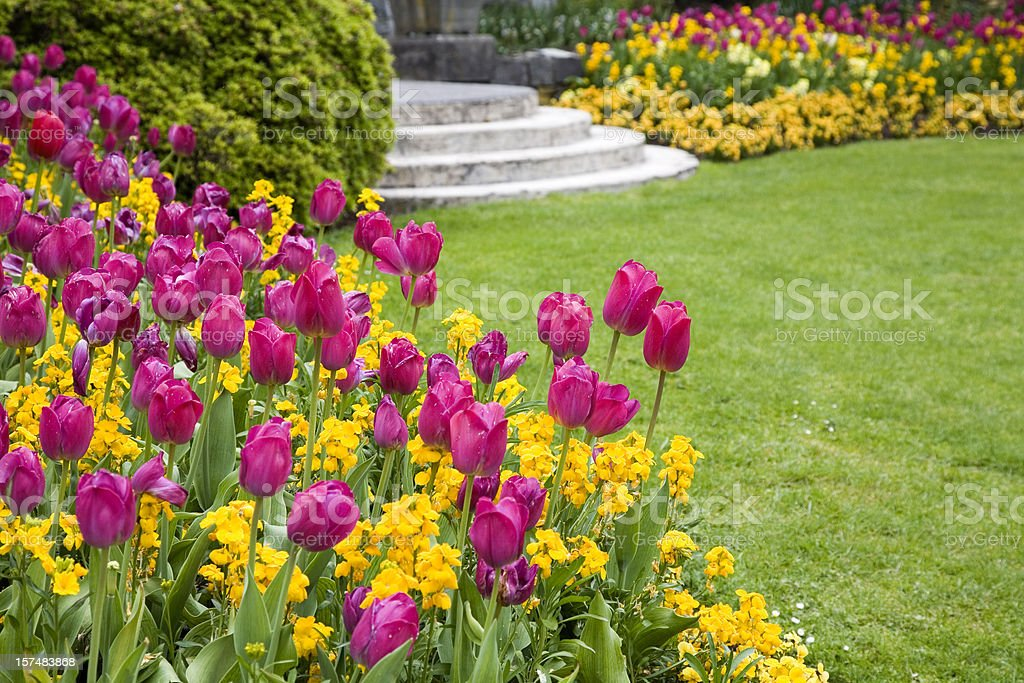 Pink and yellow flowers around a garden lawn royalty-free stock photo