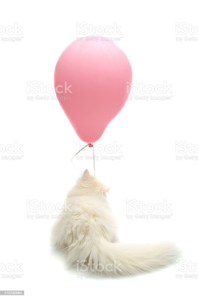 pink balloons royalty-free stock photo