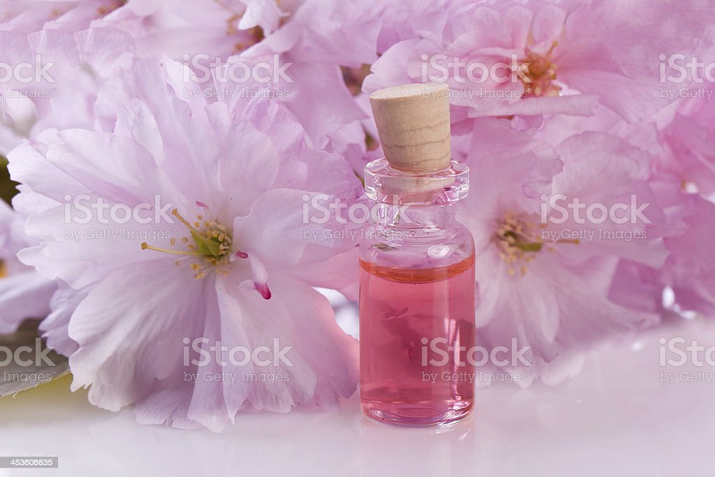 pink blossom flower and aroma royalty-free stock photo