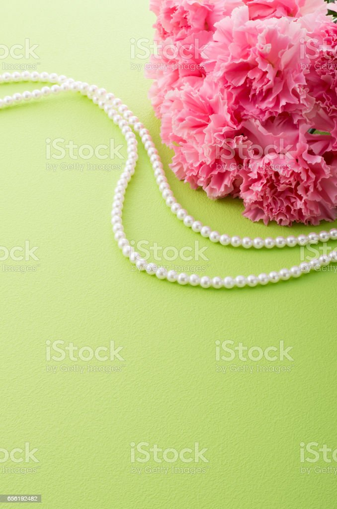 pink carnation and pearl necklace stock photo