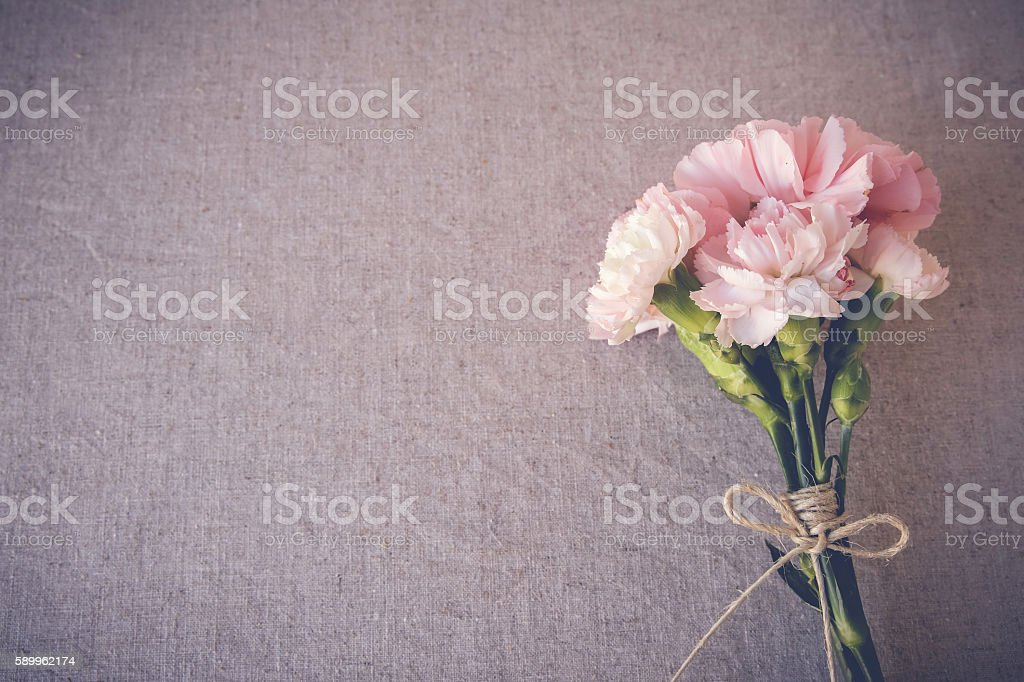 Pink carnation flowers bouquet copy space background stock photo