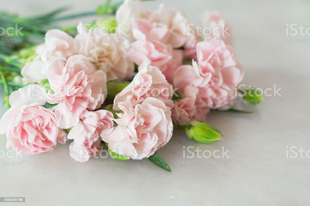 Pink Carnation Gilly Flower Bouquet stock photo