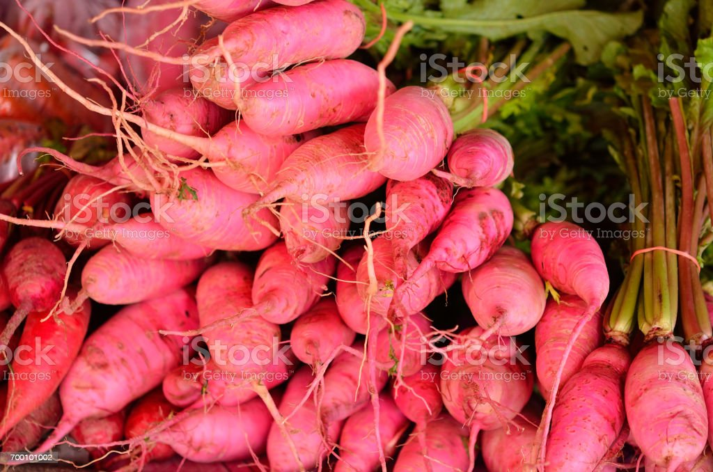 Pink carrot stock photo