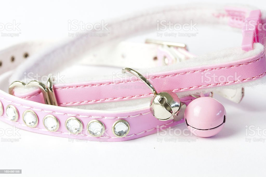 Pink Cat Collar royalty-free stock photo