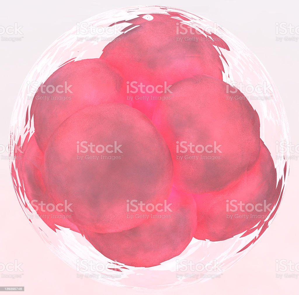Pink cell cluster III stock photo