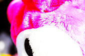 pink color fabric bear looking head