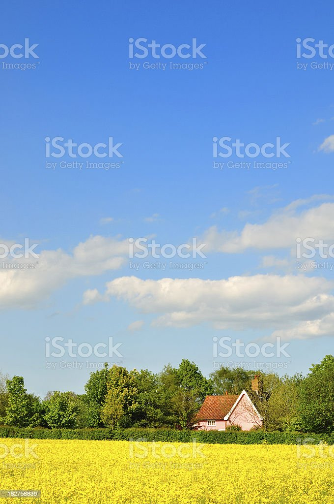 Pink cottage royalty-free stock photo
