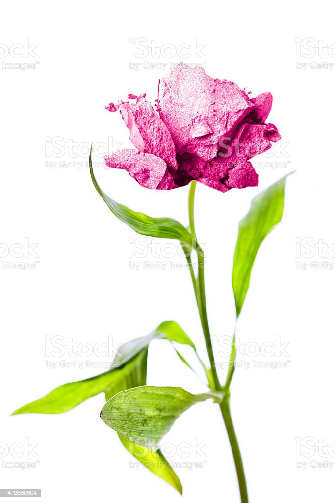 Pink Crushed Makeup Flower stock photo