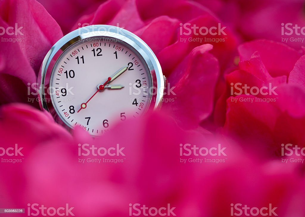 pink daylight savings time stock photo