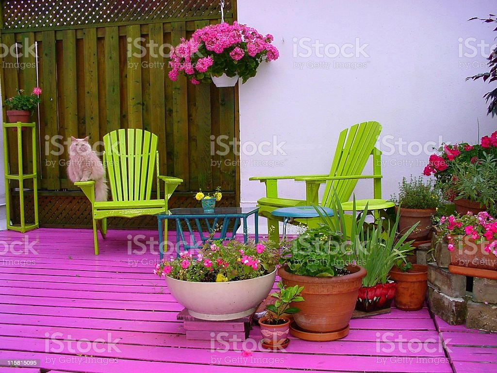 Pink Deck with Flowers, Chairs and Cat stock photo